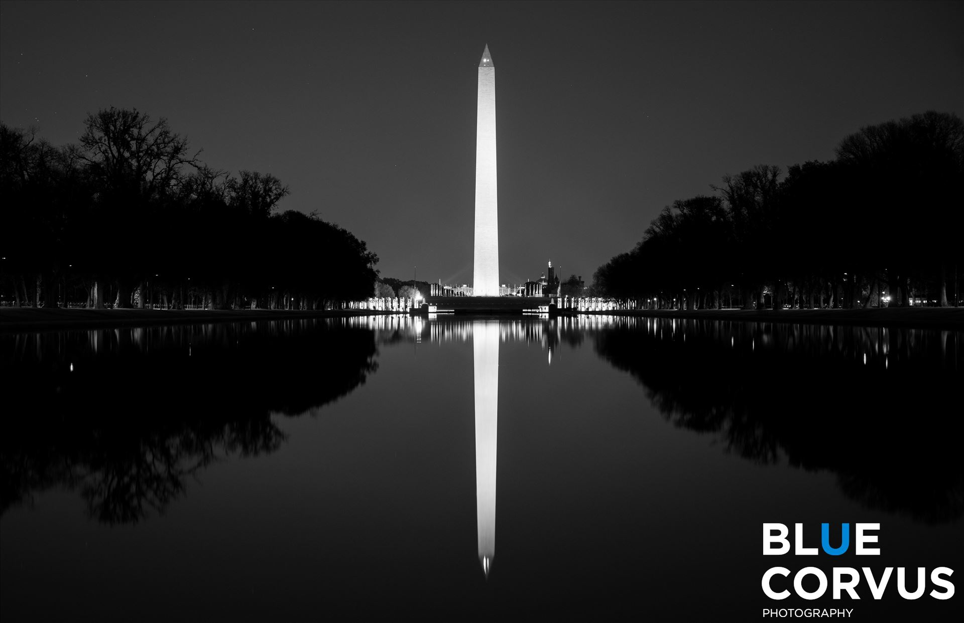 \x22Reflection-Washington Monument\x22 -  by Eddie Zamora