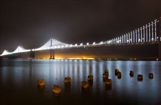 Light Up The Bay -