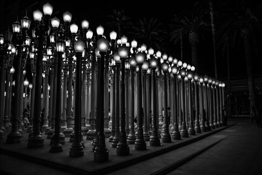 "Chris Burden's ""Urban Light"" at the Los Angeles County Museum of Art."